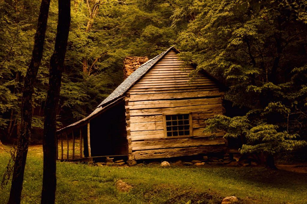 hytte i naturen