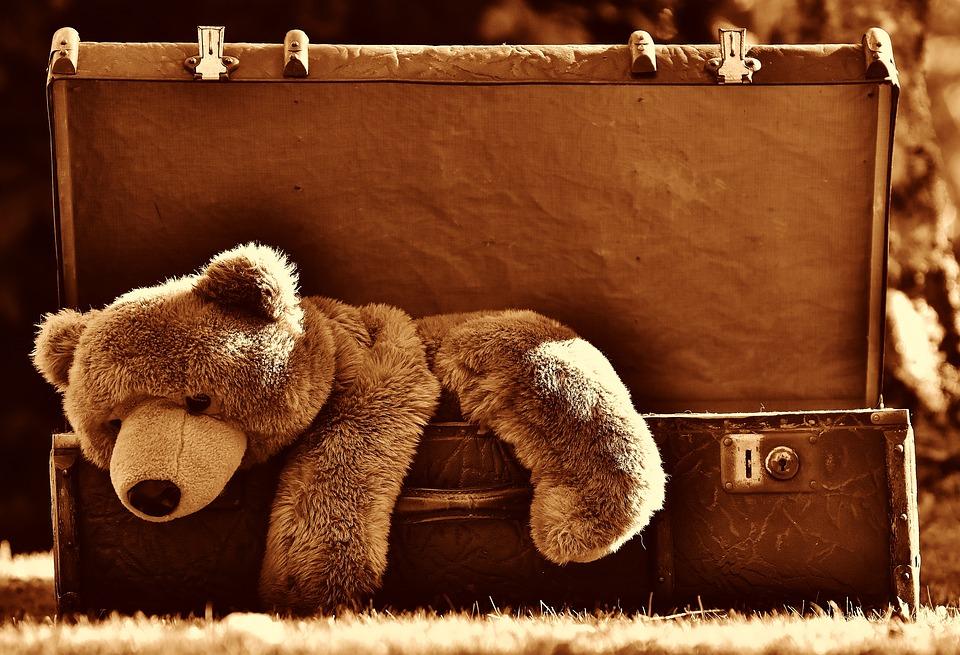 Bamse i kuffert