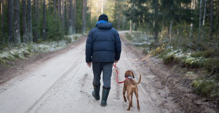 mand og hund